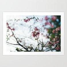 spring blur Art Print