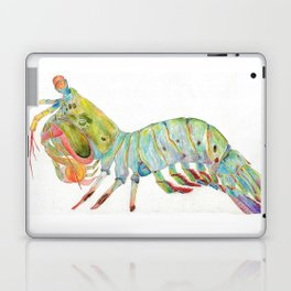 Peacock Mantis Shrimp Laptop & iPad Skin
