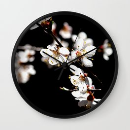 Marvelous Japanese Apricot Flowers. Play Of Light And Shadows. Black Background Wall Clock