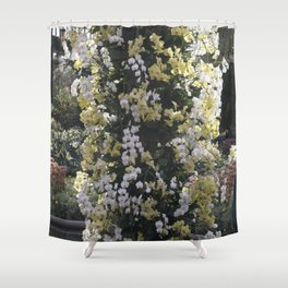 Longwood Gardens Orchid Extravaganza 18 Shower Curtain