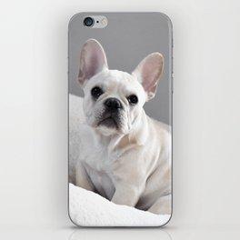 Cream Frenchie iPhone Skin