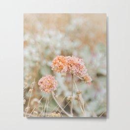 Blooming in the Dunes Metal Print