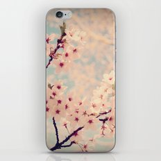 cherry Blossoms 2 iPhone & iPod Skin