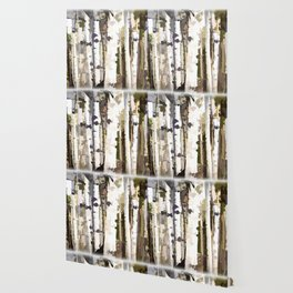 Aspen Grove Wallpaper