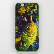 Honu iPhone & iPod Skin