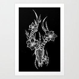 Black Cow Skull Art Print