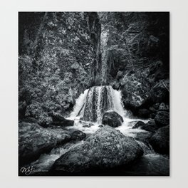 Wye Creek Canvas Print
