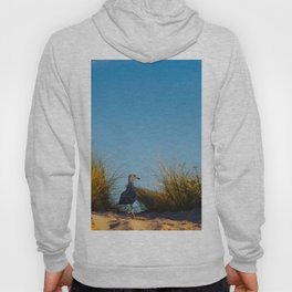 Old lighthouse from Hanseatic city of Rostock Hoody