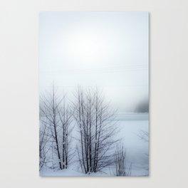 Pale Lake II Canvas Print