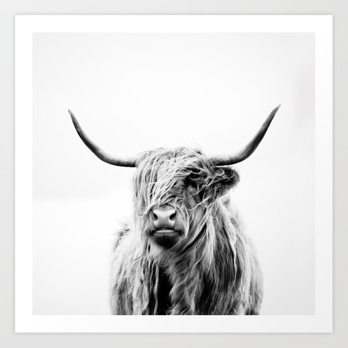 970e7ef676f portrait of a highland cow Art Print by doritfuhg