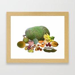 Exotic Fruit Framed Art Print