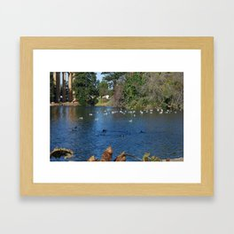 Lovely nature Framed Art Print