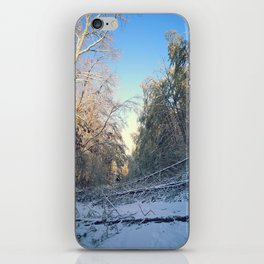 Fallen trees iPhone Skin