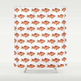 Fish everywhere Shower Curtain