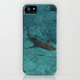 Blacktip reef shark chilling in Fakarava French Polynesia iPhone Case