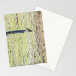 Burrowing owl Stationery Cards