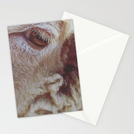 Petting Zoo Stationery Cards
