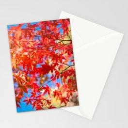 Autumn foliage at Kinkaku-ji Zen Garden in Kyoto. Stationery Cards