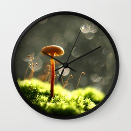 Mushroom In The Morning Light... Wall Clock