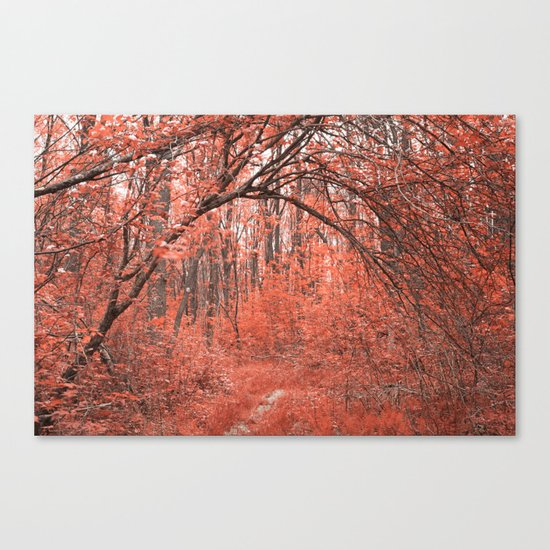 Forest Arch Trail - Salmon Pink Canvas Print