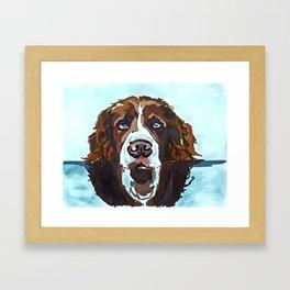 Swimming Dog Portrait Framed Art Print