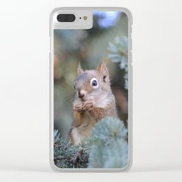 Mr. Squirrel ~ I Clear iPhone Case