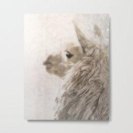 Magical White Alpaca Metal Print