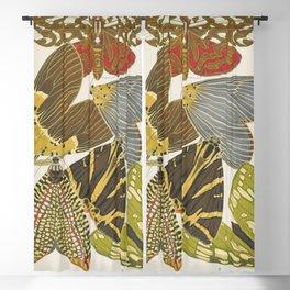Moth Print by E.A. Seguy, 1925 #5 Blackout Curtain