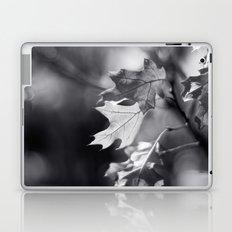 Winter Oak in Black and White Laptop & iPad Skin
