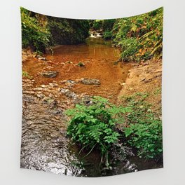 Little stream in autumn colors   landscape photography Wall Tapestry