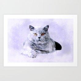 British shothair cat watercolor Art Print