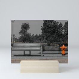 Metal Bench and Orange Fire Hydrant Near Street Mini Art Print
