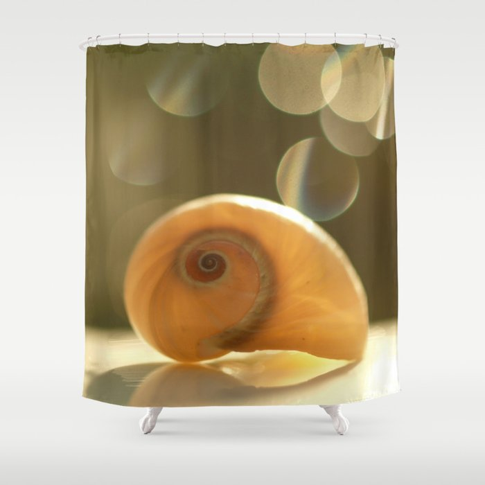 Seashell... Shower Curtain