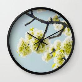 Budding White Blossoms Against A Blue Sky Wall Clock