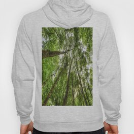 Nature Reaching For The Sky Hoody