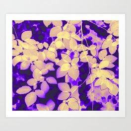 Fagus sylvatica yellow Art Print