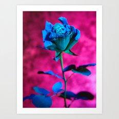 La rose evasive de bleu  - the elusive blue rose Art Print