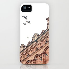 Citys Bird Sanctuary iPhone Case