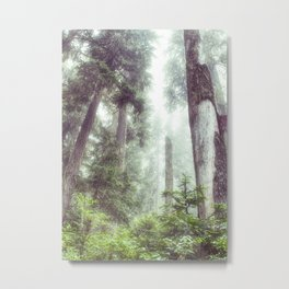 Dreamy Forest Fog Portrait Metal Print