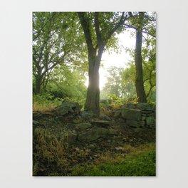 Fairy Woods Canvas Print