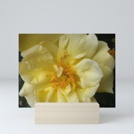 BLOOMING YELLOW Mini Art Print