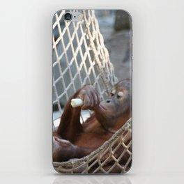 OrangUtan_2014_1202 iPhone Skin