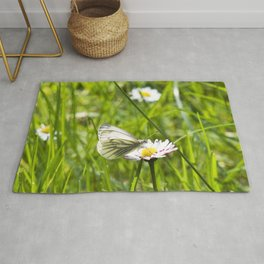 WHITE BUTTERFLY on COMMON DAISY Rug