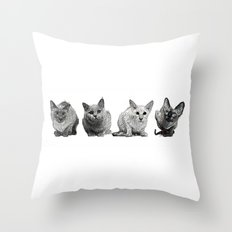 Four Gorgeous Cats Sitting In A Row Throw Pillow