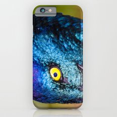 Iridescence iPhone 6s Slim Case