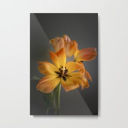 Tulips - flower art - springtime - flower photography Metal Print
