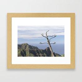 Plant Portrait in Tenerife Framed Art Print