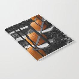 Pumpkins Ascend Notebook