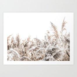 Grass Poster III Art Print