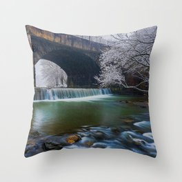 Snowing at Dam  Throw Pillow
